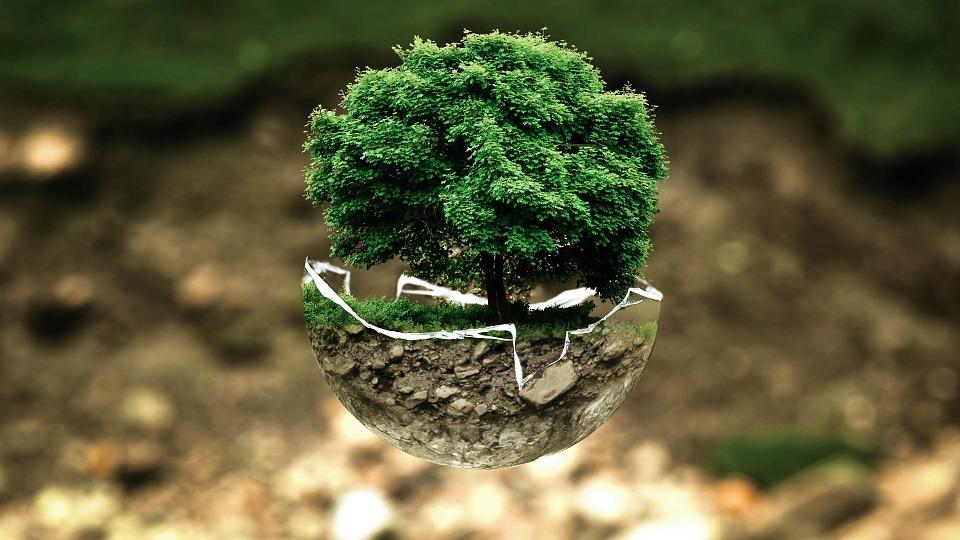 EU trajnostnih naložb ne spodbuja dovolj